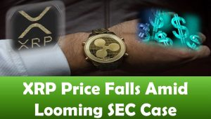 XRP Price Falls Amid Looming SEC Case