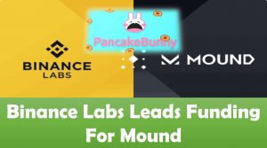 Binance Labs Leads Funding For Mound